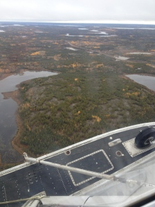 Pretty typical summer view near Yellowknife.  Lakes, trees, rocks. Aircraft is a Beaver on amphibious floats.